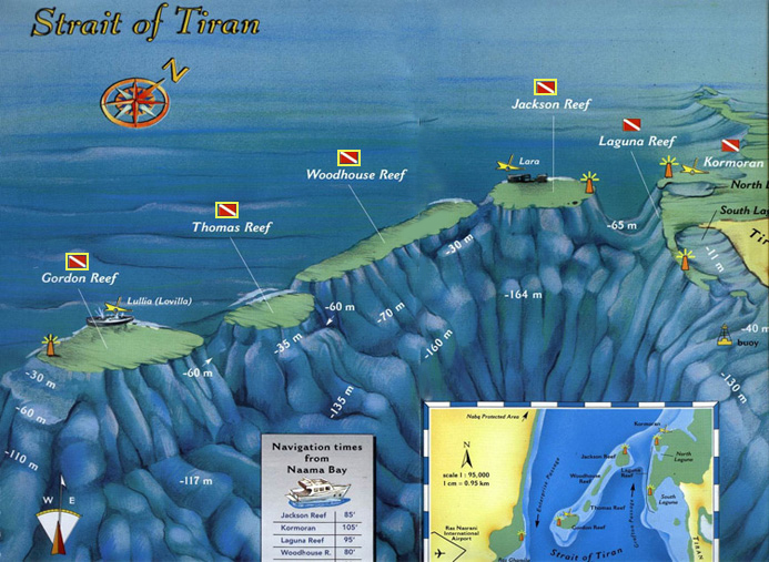 Diving Sites in the Strait of Tiran - Red Sea