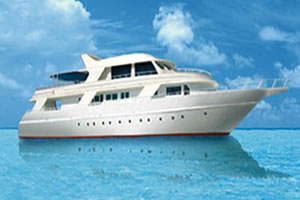 M/Y Diveone Liveaboard Diving Motor Yacht in the South Red Sea Egypt