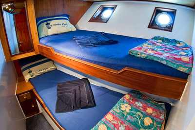 Double Cabin on King Snefro 6 Liveaboad Diving Motor Yacht in Sharm el Sheikh Egypt